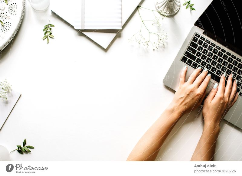 Save Download Preview Flat lay design of work desk with notebook, and cactus on green and yellow background flat color table business pastel computer desktop