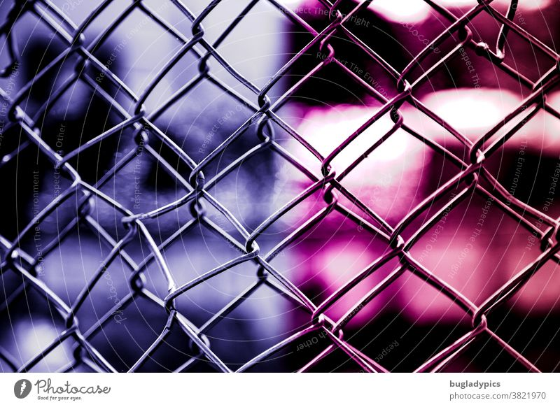 Double mesh in front of a blurred background in pink and purple/ violet Wire netting fence Fence Wire fence Safety Protection Barrier Border Bans Captured