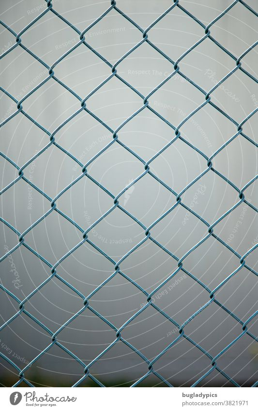 Blue wire mesh fence against a blurred grey background Wire netting fence Fence Metal Metalware Divide Border demarcation Gray Boundary line Safety Wire fence