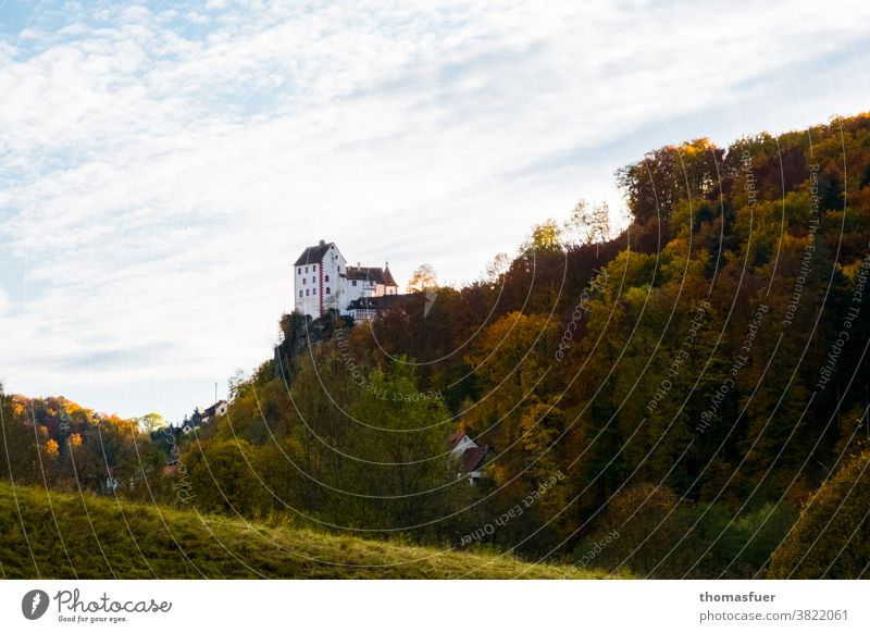 medieval castle in Franconia on top of a mountain framed by forest in autumn Castle Historic Tower Old Building Monument Sky Forest Autumn colors cloudy