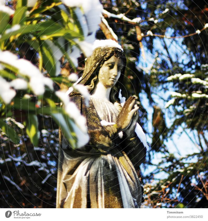 Death, suffering, redemption, mourning, rest, peace Cemetery Grave Angel Statue leaves Nature Snow Grief sorrowful Salvation tranquillity Peace Hope confident