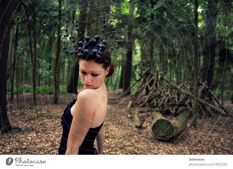 Human being Woman Nature Tree Leaf Forest Face Adults Environment Feminine Back Branch Hat Fairy tale Painted Woodground