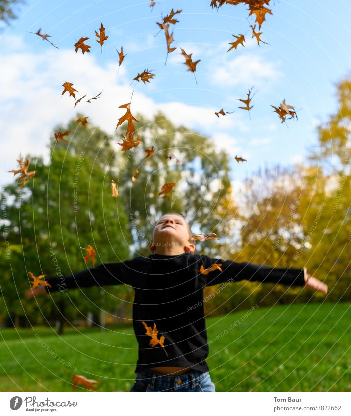 Boy throws yellow orange coloured leaves in the park Autumn leaves Child Boy (child) look up to the sky Blue sky Worm's-eye view Oak leaf leaves fall Autumnal