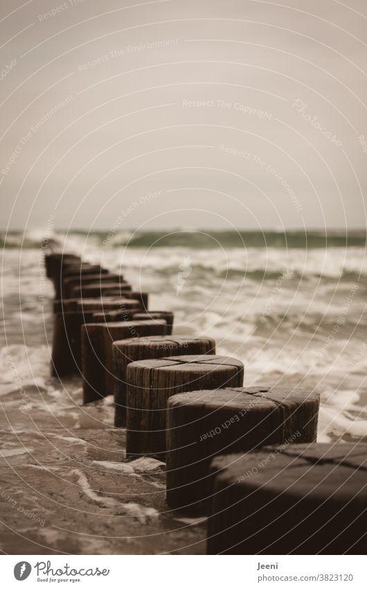 Waves crash against the wooden groynes in the Baltic Sea Beach Ocean coast Wood Water Gale Break water Sky Gray Bad weather Mecklenburg-Western Pomerania