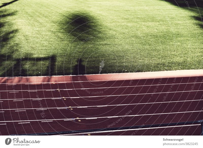 Shade at the sports field Shadow Shadow play Running track Lawn lawn Sports facility Visual spectacle Sunlight Silhouette Sporting grounds