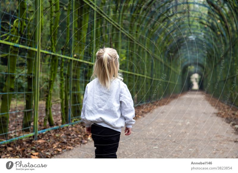 little cute blond child walks alone in a tunnel road in a park, beautiful green forest wearing grey hoodie childhood young small autumn cheerful spring person