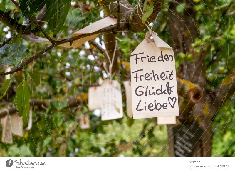 Label with the desire for peace, freedom, happiness and love hanging in a tree Desire Hope Peace Freedom Happy Love Tree Emotions emotion Expectation Joy
