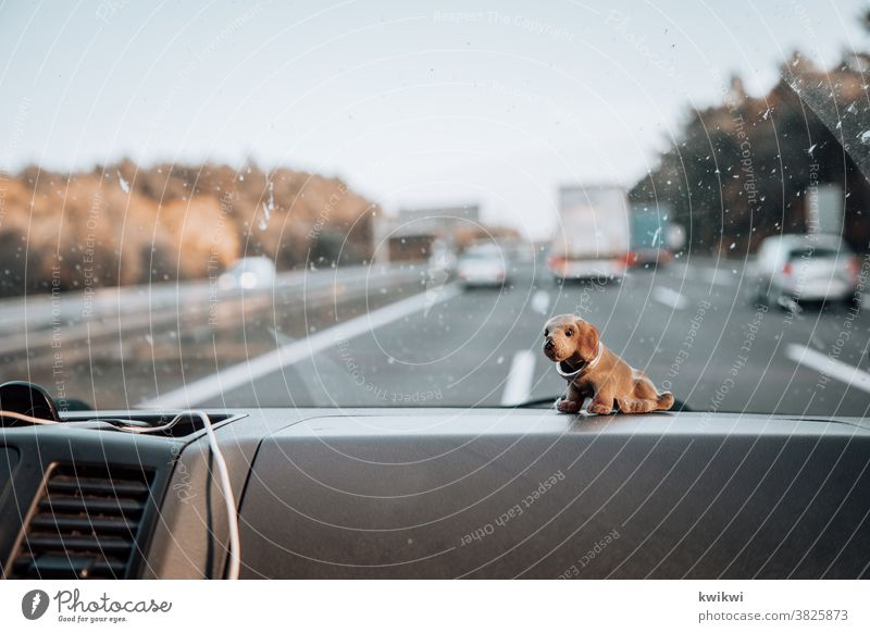 Car ride with grandpa loose dachshunds Old Grandfather Man Senior citizen Exterior shot Together Generation Deserted car Car journey Highway Street lorry
