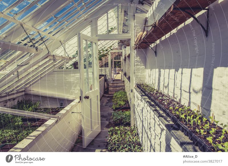 greenhouse Heligan agriculturally Agriculture Architecture pretty Botany Building colourful Cornwall Harvest cultivate Cultivation Design eco ecology England