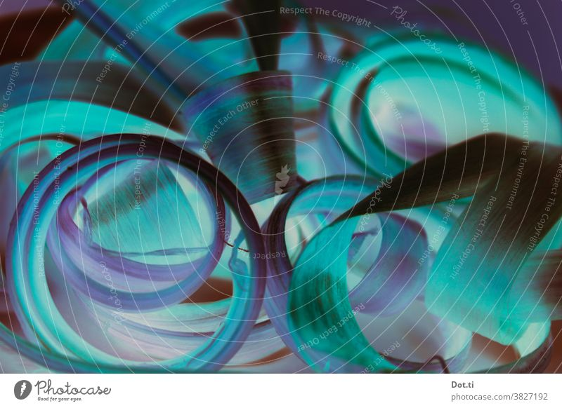 Curly loop Turquoise Violet Rhubarb Structures and shapes Abstract