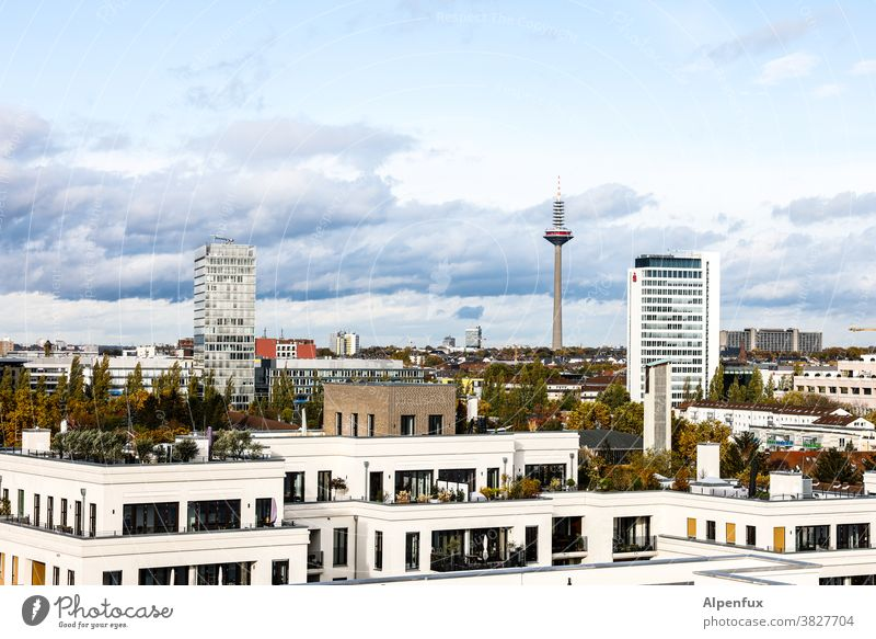 New home Frankfurt Architecture High-rise Main Town Bank building Exterior shot Skyline Colour photo House (Residential Structure) City Downtown Hesse Building