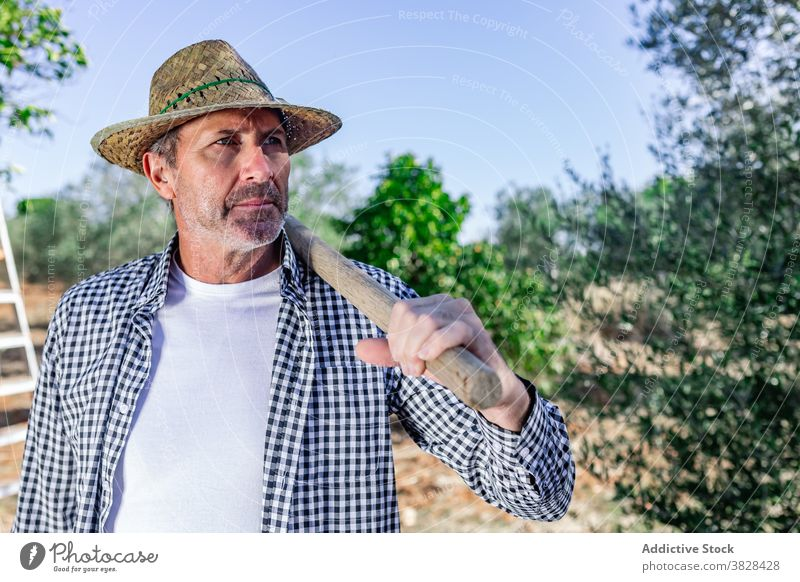 Serious mature farmer in green vegetation in plantation man serious agronomy confident agriculture worker harvest job male countryside stand tree straw hat