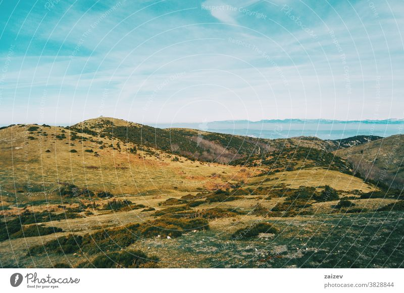 View of a landscape with some yellowish hills mountains wild environment nature vegetation shrubs bushes green brown sky ground background trees bare trees