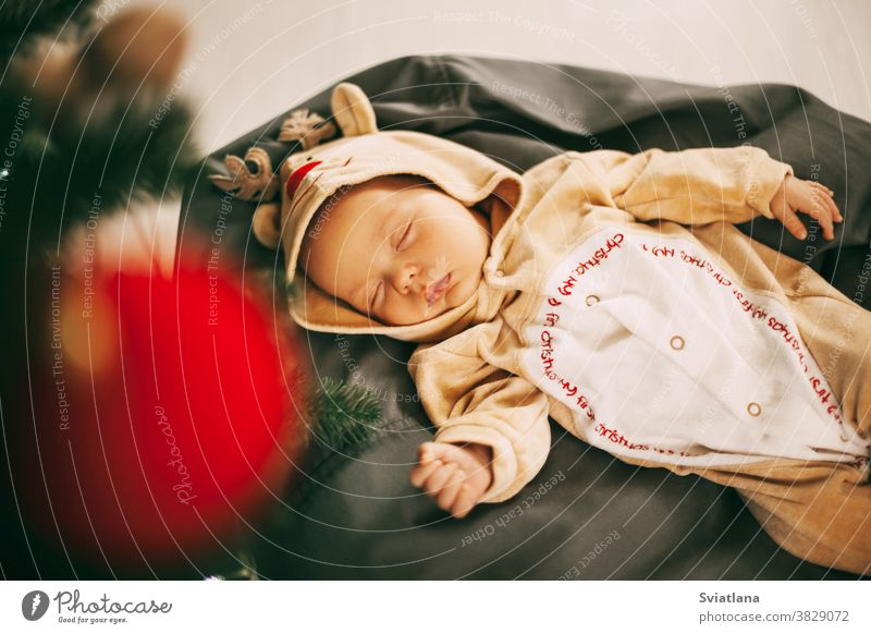 A cute newborn baby boy in a reindeer costume sleeps on a pouf in a room decorated for Christmas and New year. A child sleeps next to a Christmas tree on New year's eve. The concept of Christmas and the New year. Celebration, decoration, greeting card, ...