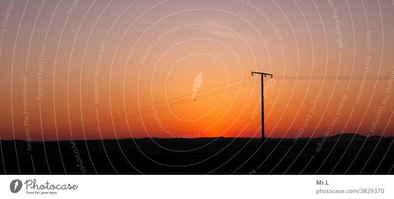 Once upon a time... Sunset Desert Electricity pylon Bird Sky Exterior shot Nature Deserted Landscape Copy Space top Colour photo Sunlight Cloudless sky panorama