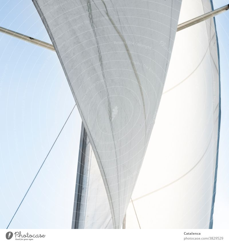 Inflated | the wind the sails of the yacht Sail headsail mainsail Pole saling Sky sailing yacht Sailboat Sailing Wind Freedom evening tax locomotion