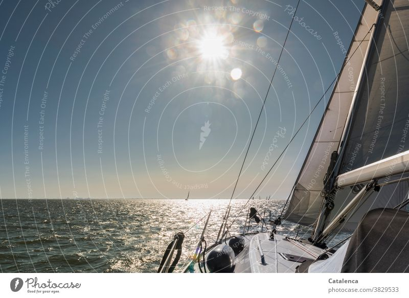 The sun is shining and we are sailing Beautiful weather Wet lake nordesee Sailing Water Ocean Front Sail sailing yacht Sunbeam Horizon Blue White Sailboat