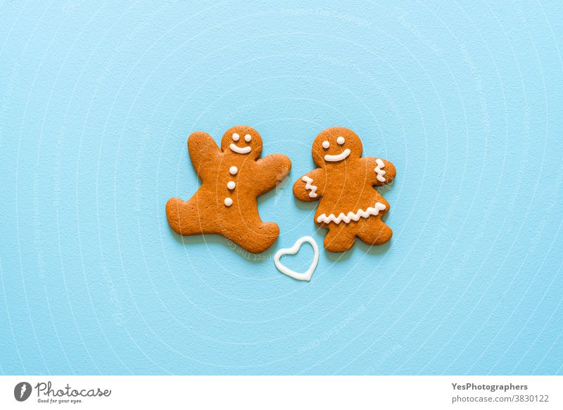 Gingerbread cookies isolated on a blue background. Christmas homemade cookies top view Christmas cookies Merry Christmas above view advent bake baked biscuit