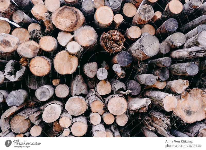 stack of wood Wood Stack of wood Tree trunk tree trunks Firewood Forestry Logging Environment Nature Timber Exterior shot Fuel Deserted Colour photo Raw Round