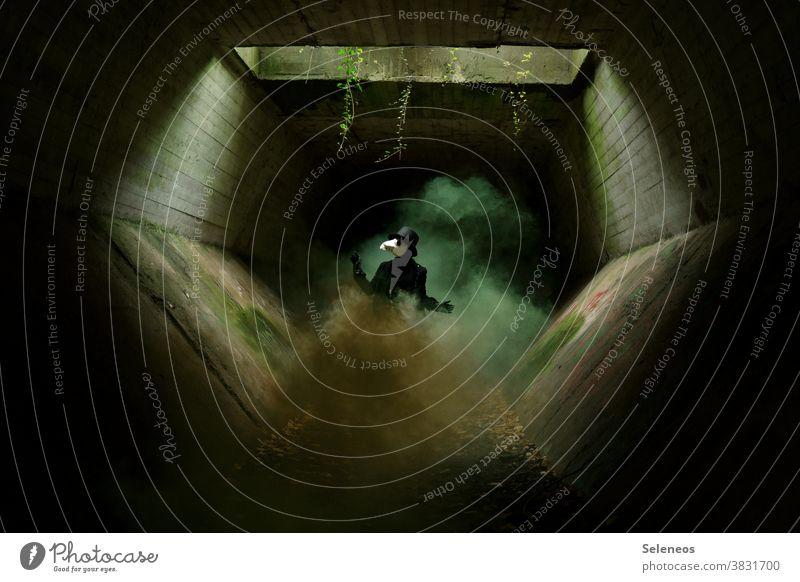 Plague Doctor cladding Hallowe'en Tunnel Smoke Creepy Mask Cylinder Dark somber Light Lightshaft Exterior shot Human being Fear Carnival Adults Colour photo