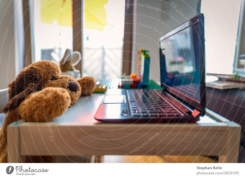 Funny homeoffice scenery with a stuffed teddy and his friend a rabbit working at a laptop. cute teach show living room background business computer house