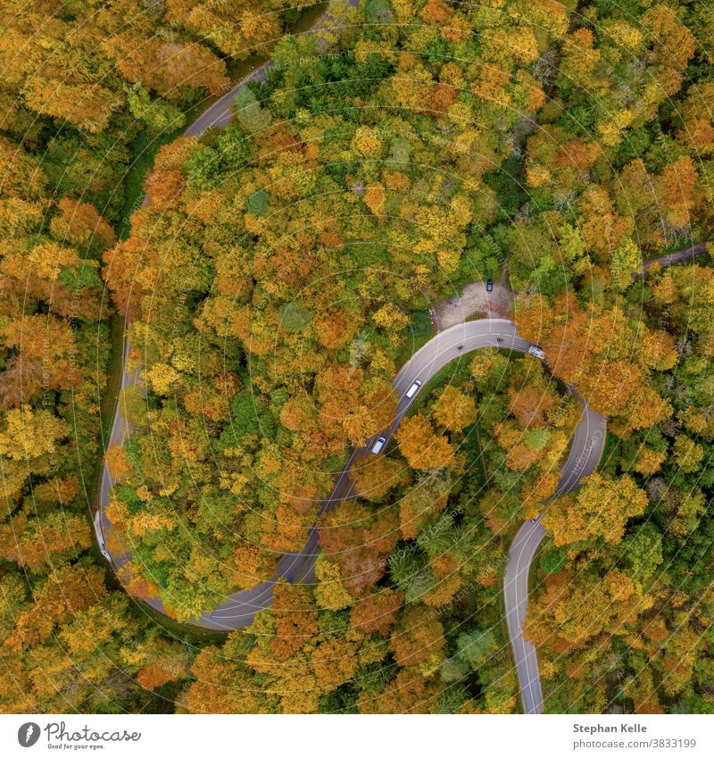 Autumn from above with a droneshot of a double curve in a colorful forest and driving cars, beautiful fall, positive emotional nature photo. autumn aerial road