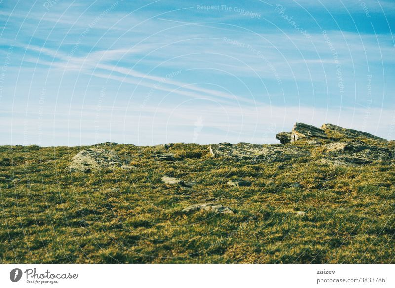 View of some large rocks on the ground among the grass landscape grassland meadow field view horizon stones big sky green blue herb proportional gray vegetation