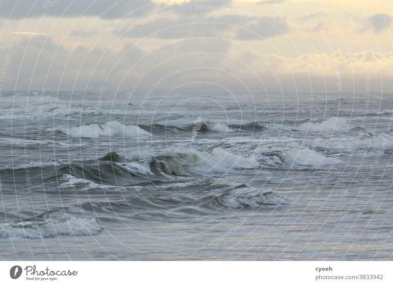 wild North Sea High tide Waves Swell North Sea beach North Sea Islands Langeoog East Frisland Wind Wild stormy morning mood morning hour somber peril Foam Force