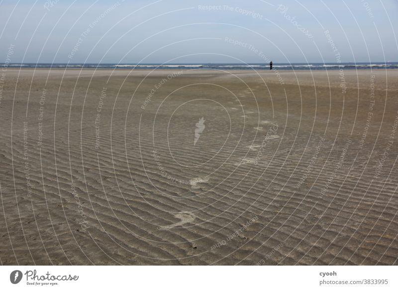 I'll follow you... Tracks Sand Beach Langeoog North Sea East frisian island East Frisland Sandy beach Feet Footprint Transience ensue High tide Low tide
