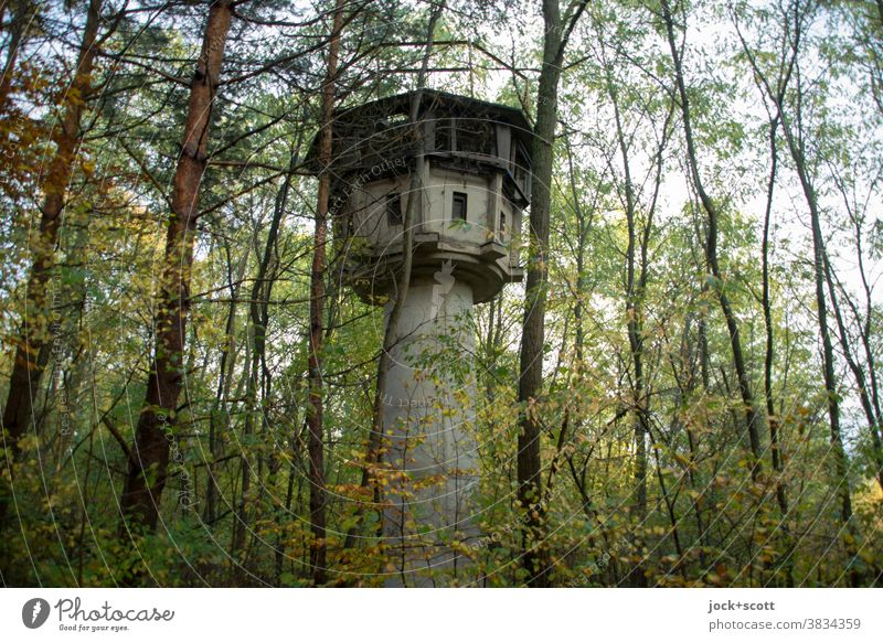old watchtower in the middle of the forest Forest Nature Tree Autumn lost places Architecture Decline Ruin Past Derelict Historic covert Concealed Watch tower