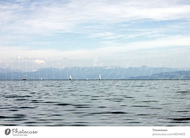 Calm scenery at Lake Constance Water Mountain Sky Clouds Beautiful weather Sailboat Vacation mood Landscape Blue Vacation & Travel Waves