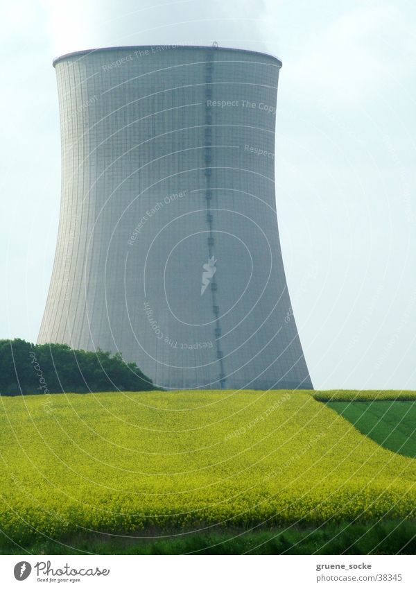 Cooling tower in rapeseed Nuclear Power Plant Canola field Spring Industry Electricity generating station