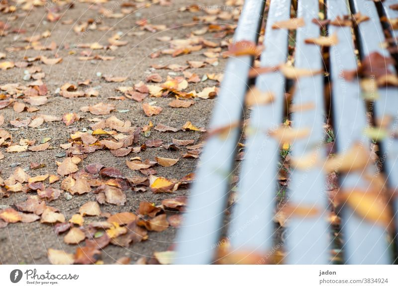 Tristesse. Autumn foliage Nature Autumnal leaves Autumn leaves Autumnal colours Leaf Exterior shot Deserted Environment Transience Early fall Change Park bench