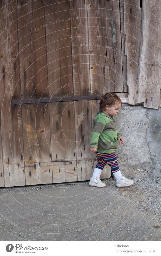 I'm going Toddler Girl 1 - 3 years Sneakers Brunette Concrete Wood Going Brown Multicoloured Gray Infancy Colour photo Exterior shot Copy Space top