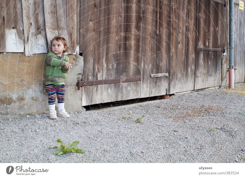 In the game Toddler Infancy 1 - 3 years Contentment Experience Innocent Colour photo Exterior shot Day Central perspective Looking away