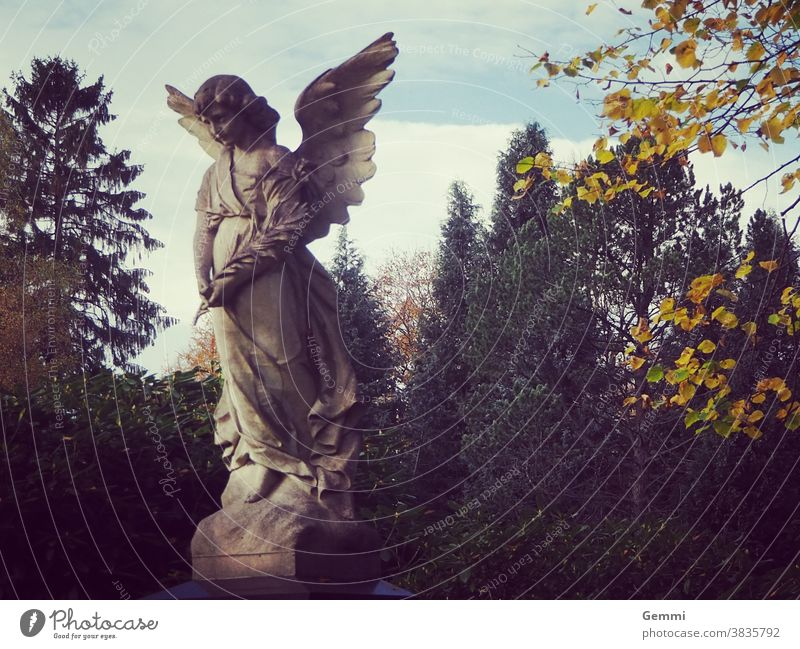 Angel on a cemetery Statue Sculpture angel wings Cemetery Autumn Grave tranquillity contemplation Belief consolation Eternity Sadness Transience Marble