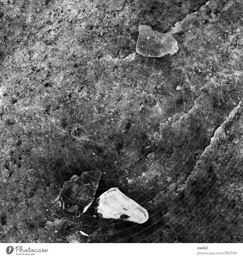 lapidary Stone Lie Dark Authentic Firm Small Near Under Hard Minerals Transparent Black & white photo Exterior shot Close-up Detail Structures and shapes