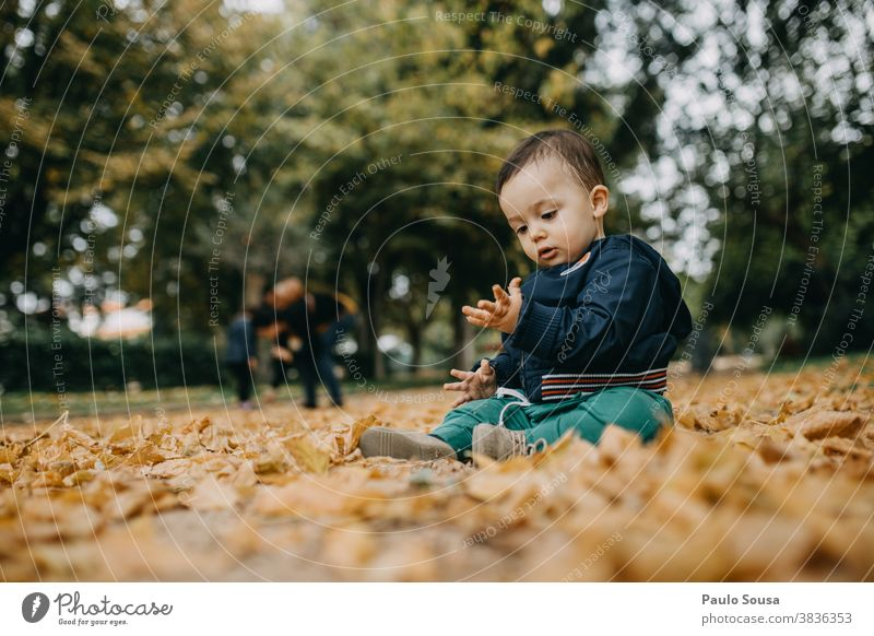 Toddler playing with autumn leaves Caucasian 1 - 3 years Day outdoors Autumn Authentic Autumnal Autumn leaves fall falling Nature Infancy Autumnal colours