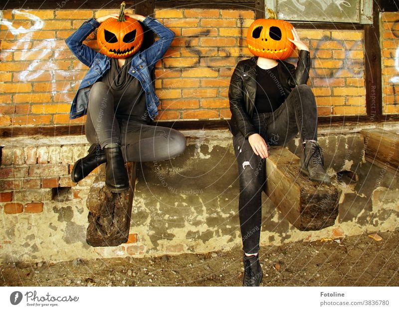Let's hang out. - or two pumpkin-headed girls get together to chitchat Hallowe'en Pumpkin Pumpkin time Pumpkin Face pumpkin face Creepy creep grimace Grinning