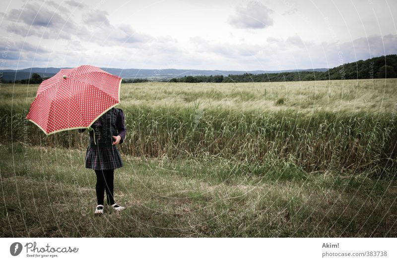 Human being Child Nature Landscape Girl Far-off places Feminine Rain Field Infancy To go for a walk Protection Hill Umbrella 8 - 13 years Skirt