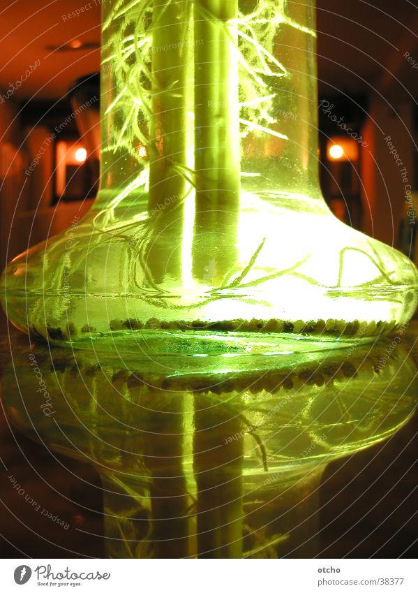 chic illuminated flower vase Vase Green Light Reflection Glass Detail