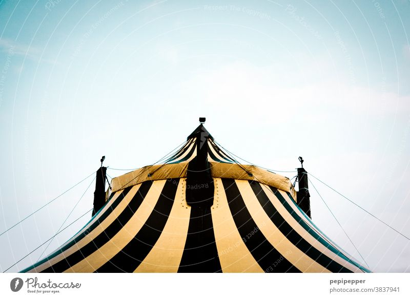 circus tent Circus tent Tent tarpaulin Exterior shot Colour photo Deserted Fairs & Carnivals Leisure and hobbies Sky Event Entertainment Day Shows Culture Roof