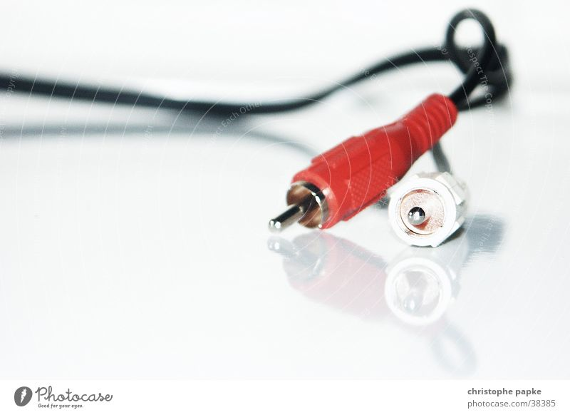 White Red Music Technology Cable Television Telecommunications Analog Connection Technique photograph Attachment Tone Sound Connector Technical Transfer