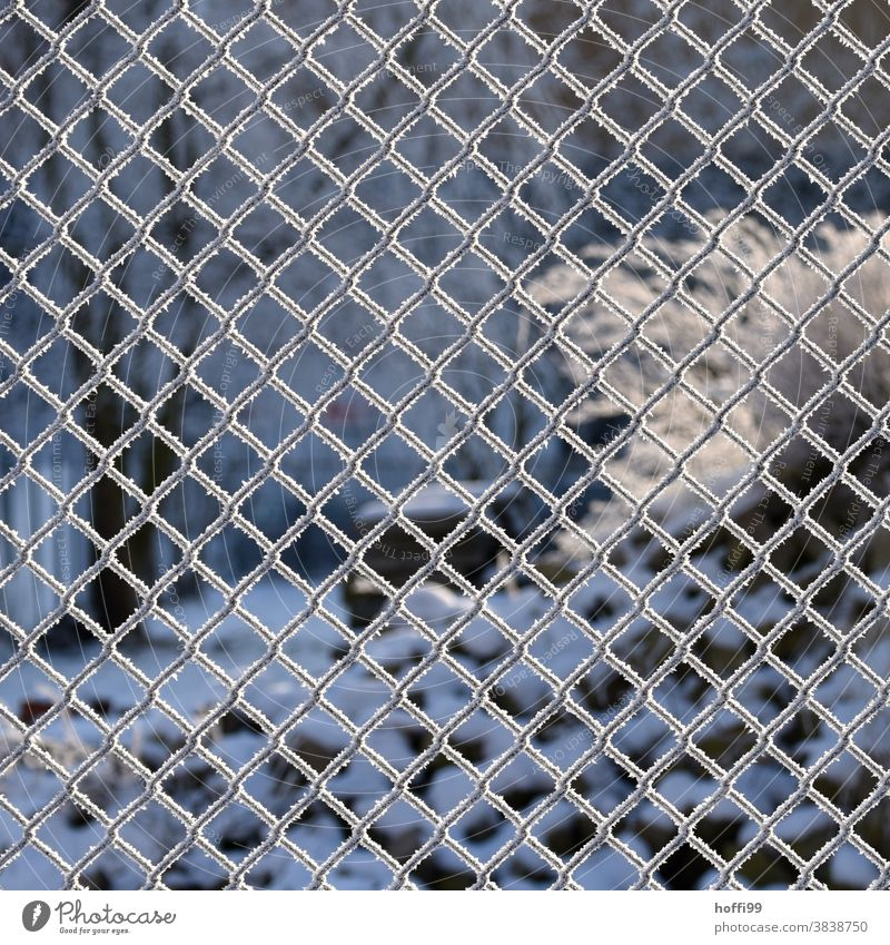 Fence in winter with hoarfrost from frozen fog Wire netting fence Hoar frost Frost Ice Snow ice and snow Winter Cold White Frozen Ice crystal Freeze