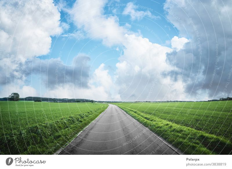 Asphalt road in a rural countryside landscape motion transportation plain sunny spring clouds freedom perspective escape image roadside adventure photography