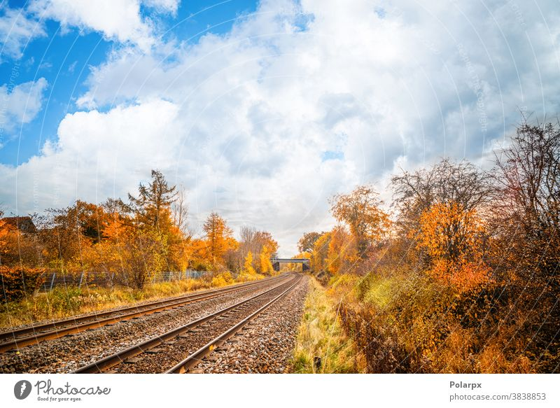 Railroad tracks going through a colorful autumn scenery tranquility way nobody curve gravel scenic path sky outdoor background sunset iron mountain countryside