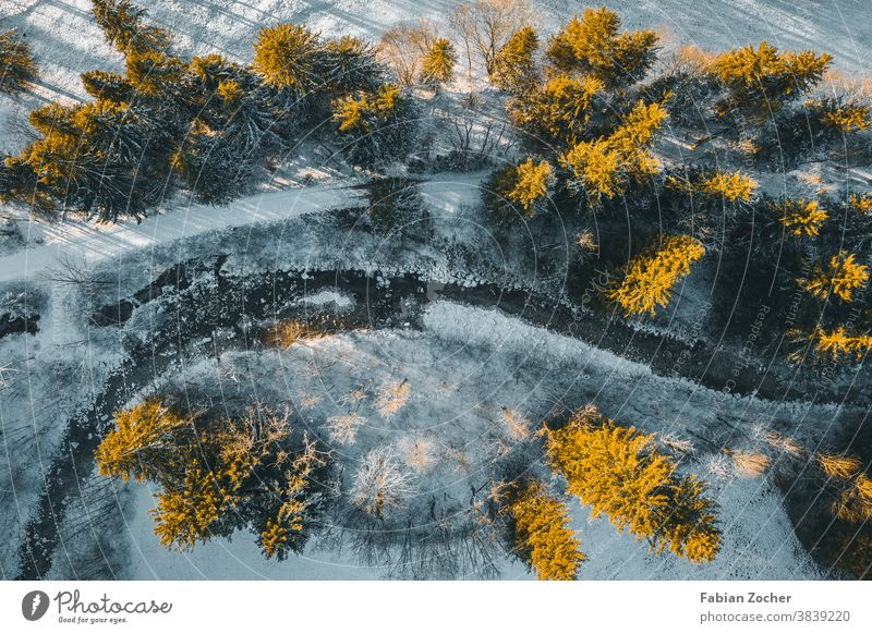 Winter forest from above Allgäu Bavaria mountains Germany drone Europe Landscape photographs Nature Schwangau Sunset TopDown Forest Winter 2020