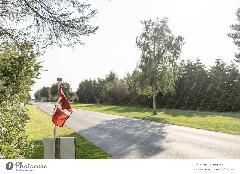 Danish flag on road Denmark Flag Street Deserted Ensign Red Patriotism Pride Politics and state vacation off Tree Blow Exterior shot Colour photo Summer
