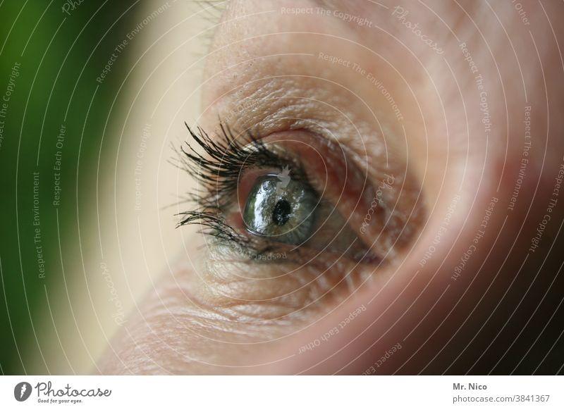 One eye Eyes Woman Close-up Looking Eyelash iris Iris Detail Senses nearsighted farsighted Vision Eye colour macro Eyelid see naturally Eye-catcher optical Skin