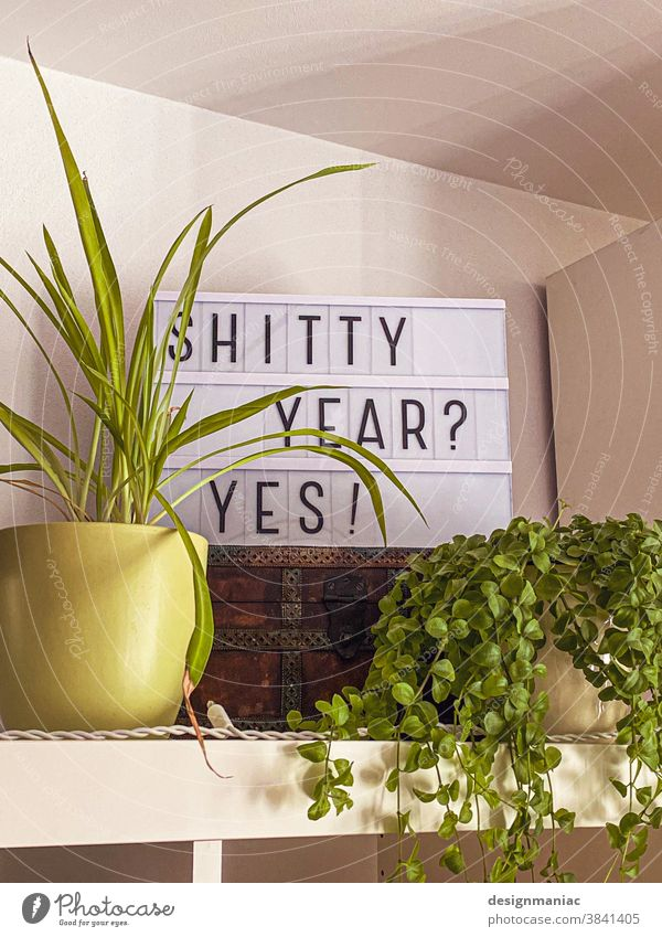 Shitty Year? Yes! typography Signs and labeling Plant Characters Wall (building) Signage Pot plant Yellow Green Treasure Chest Shelves Room Foliage plant White